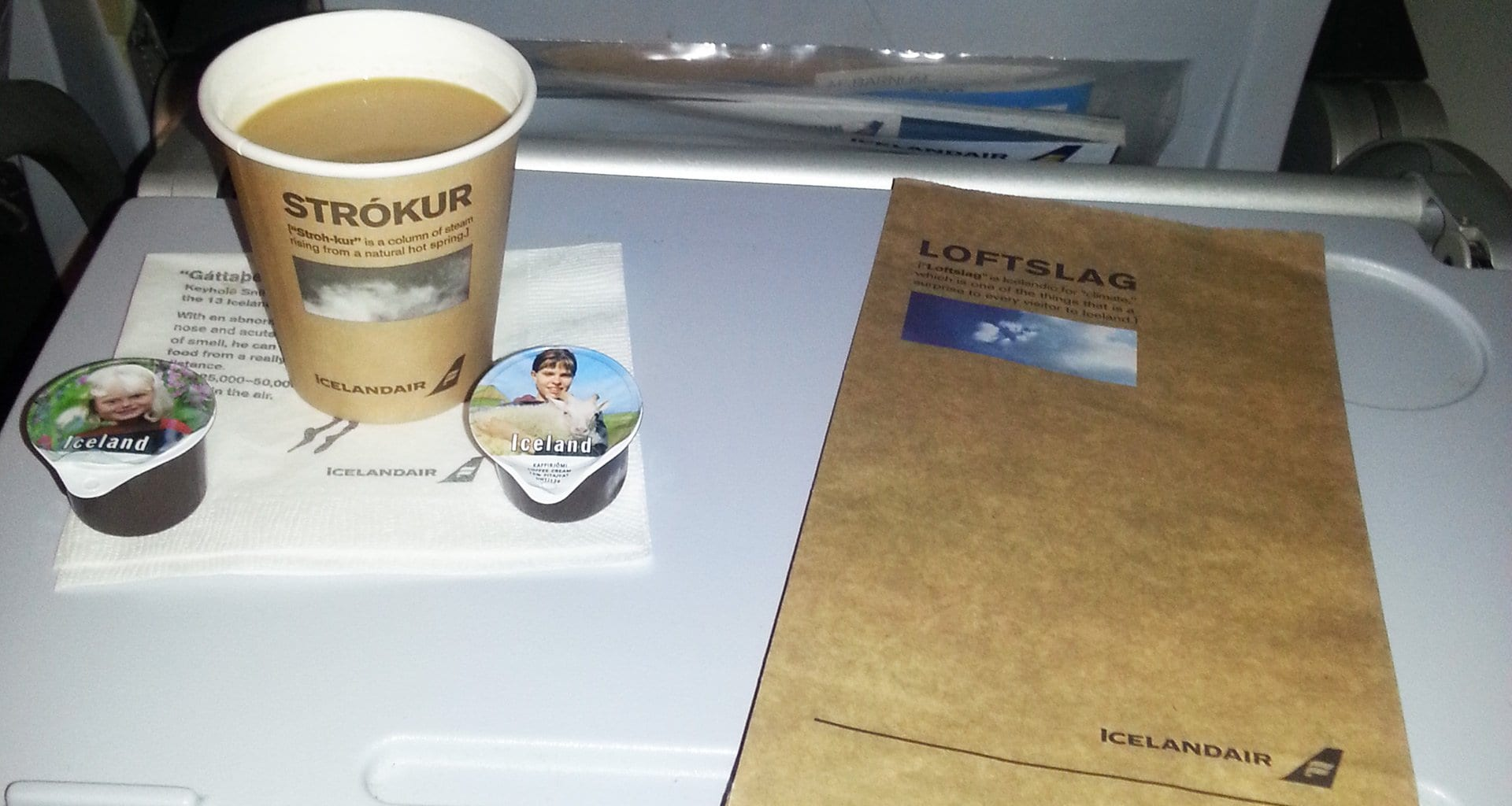 Icelandair Coffee and Sick Bag