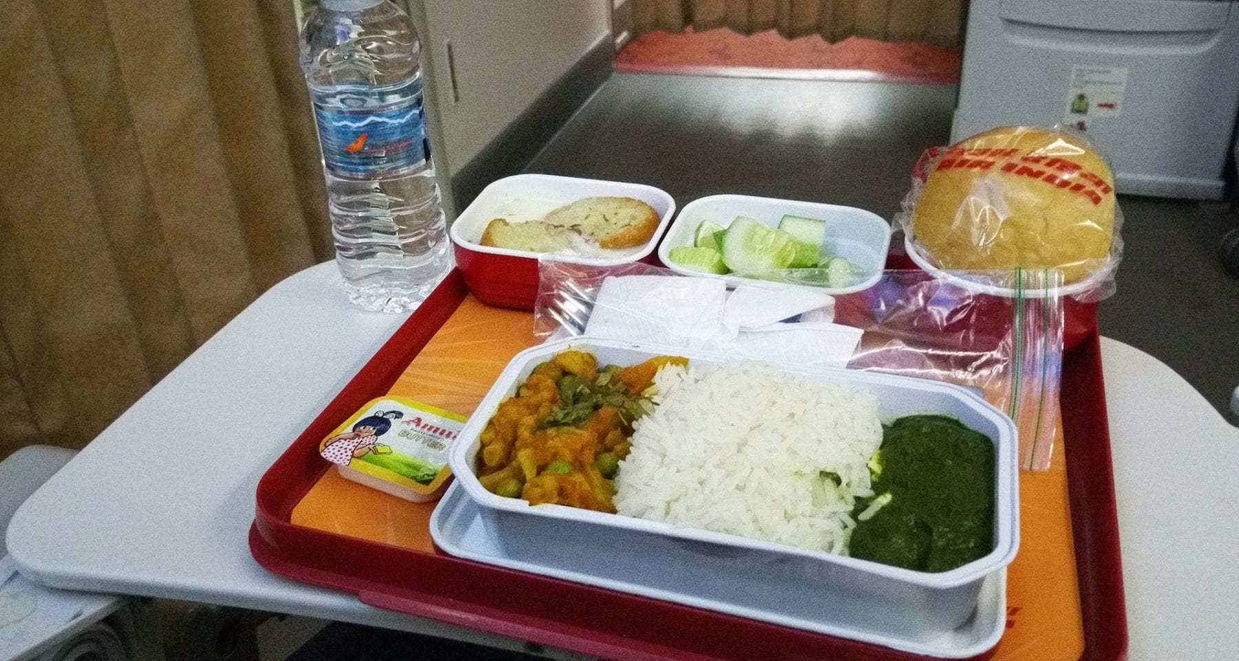 air india economy class meal